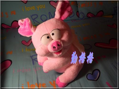 这个可爱至极的大肥猪会给你带来无限好运