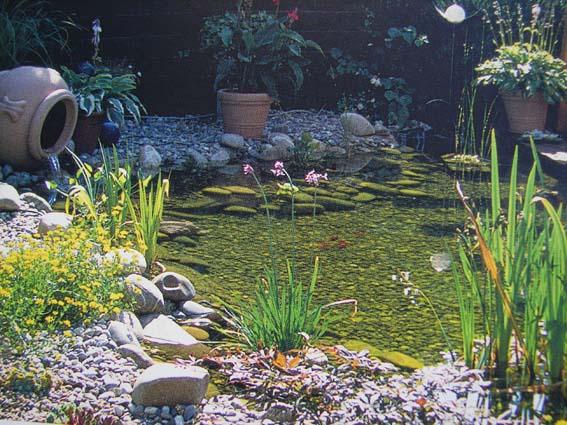 1平米小型温泉设计图龙佑鱼池别墅图片