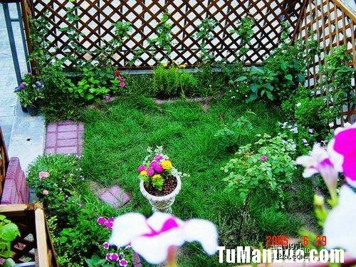 我收集的上千张花园图片,希望带给大家自然的美丽音符,也希望为有