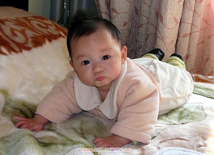 一周可爱女婴儿图