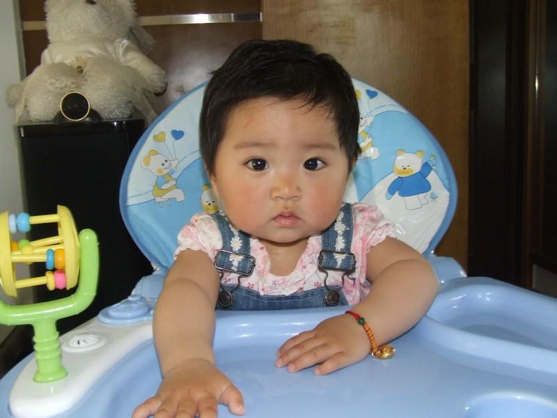 [豬寶寶] 旖旎嘉園~小豬寶貝的金色童年 P170元祖親子 P173更新-旖旎