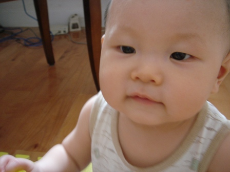 http://hiphotos.baidu.com/shenmiwufan/pic/item/333f6631365ebe01eac4af44.jpg_编辑 引用                            shenmishuiyu