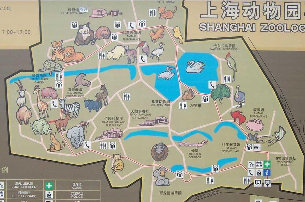 再度游玩上海动物园
