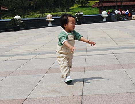 帅哥/其实是在追着鸽子跑但是我不知道为什么越看越像是再跳交谊舞...