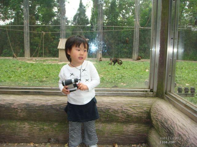 小猴子真可爱
