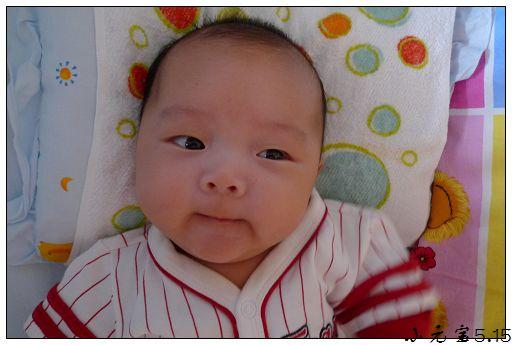 宝宝胖成球的可爱图片