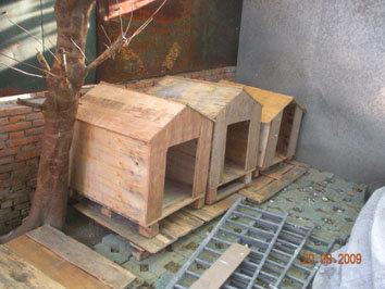 苏州宠物协会(原苏州小动物保护组织)倡议书