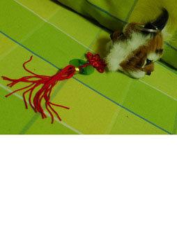 老虎头部-文字甘肃纯手工活.两面的虎头虎脑,材料是兔兔毛.我带了十多个,图片