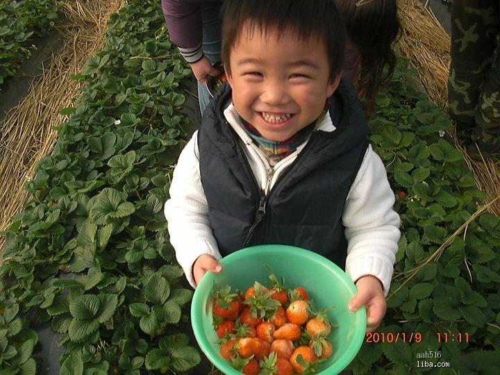肉球的幸福生活#珍珠泉.五岁二个月