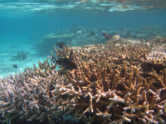 海底世界33