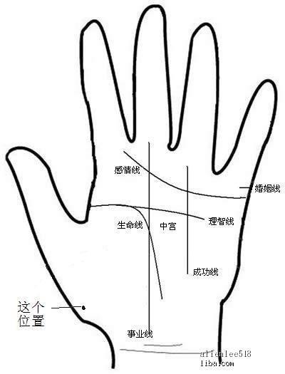 主题:寻找左手掌心有痣的女人图片