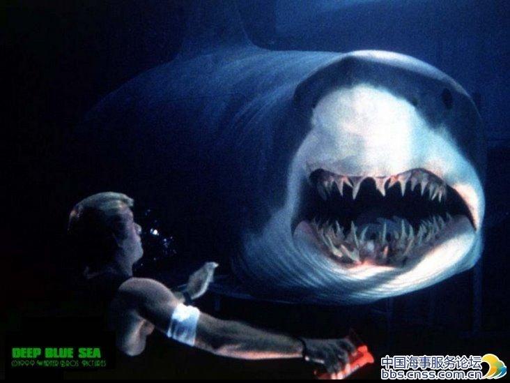 深海恐惧症测试图 深海恐惧症测试 深海恐惧症测试长图