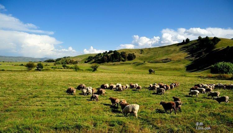 巴音布鲁克草原是中国第二大 草原