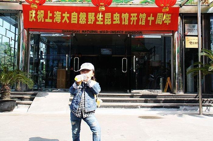 上海浦东昆虫博物馆,浦东昆虫博物馆