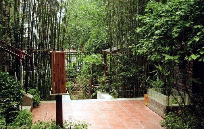 竹子手绘小品景观