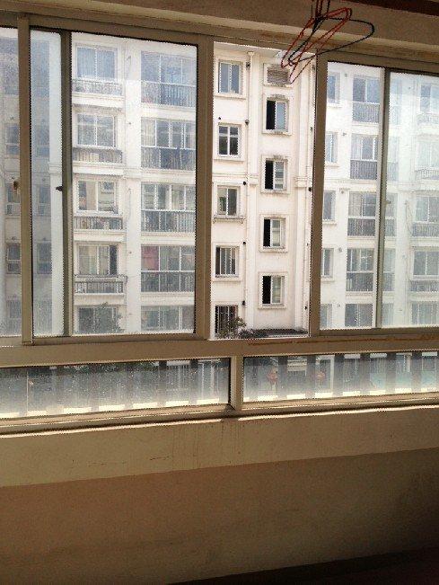 阳台的窗户看出去  纠结一下这个护栏是要拆呢,还是拆呢,还是