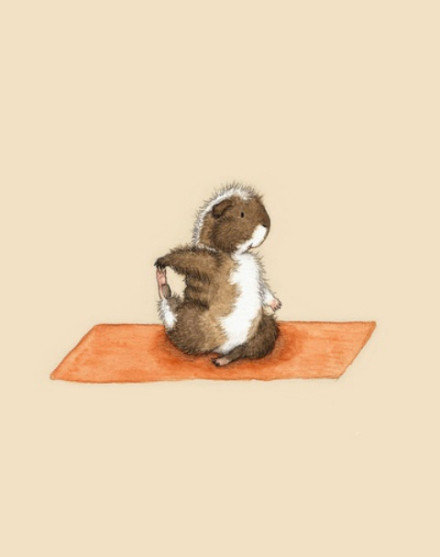 一组非常可爱的动物瑜伽图片