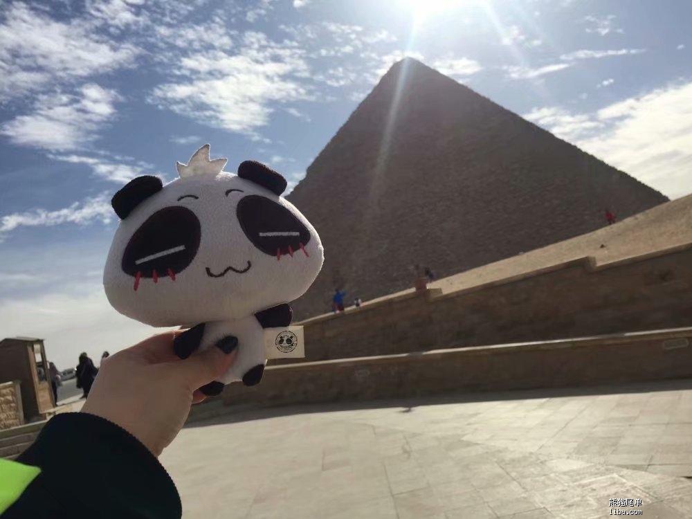 埃及熊猫.jpg