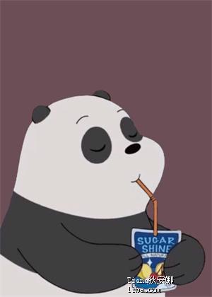熊猫.png